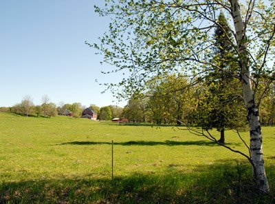 Morning, May 29th, the view from the third pasture