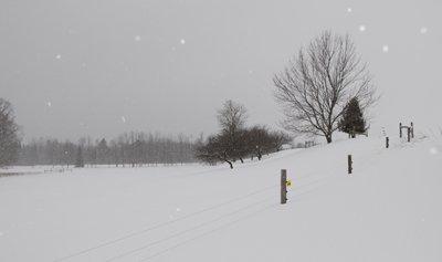 February snow fall