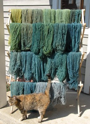 Pussa inspecting indigo dyed yarn