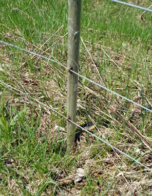 Buried fiberglass fence post