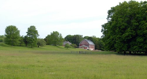 View from pasture #3