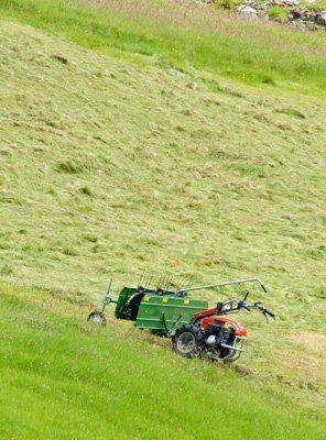 Motorized, wal behind hay rake