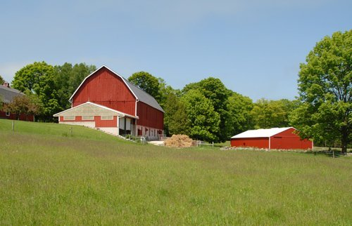 newly painted barns