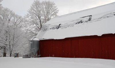 Snow on the barn