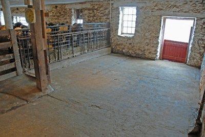 Shearing area before shearing