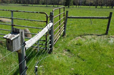 Gate repaired