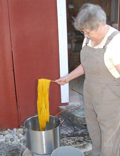 goldenrod dyed yarn