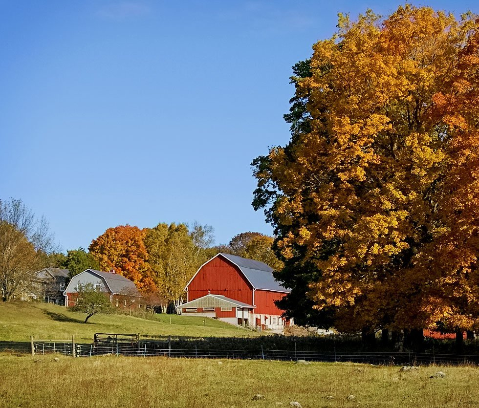 Fall view of the sheep barn from the pastures
