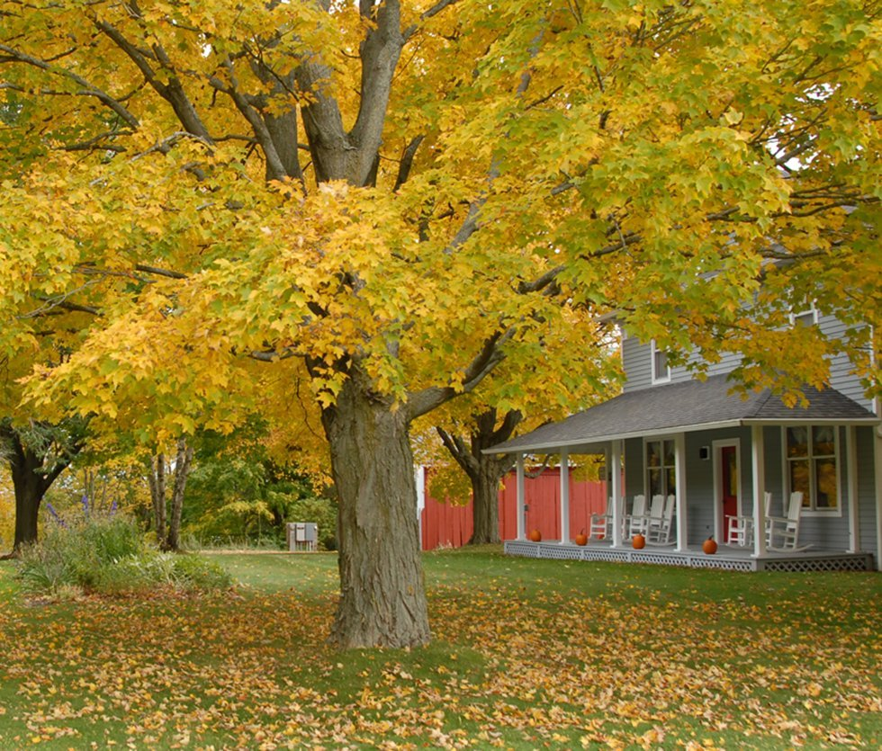 View of Whitefish Bay Farm in the fall