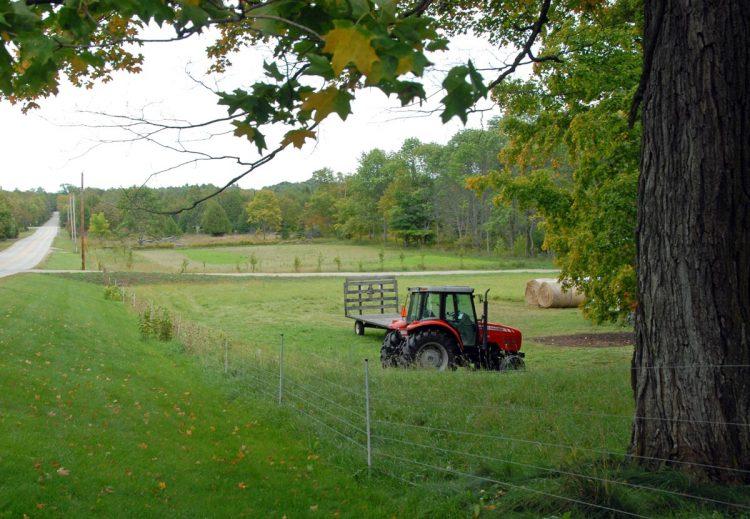 Road Pasture
