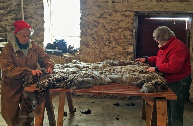 Skirting the fleece