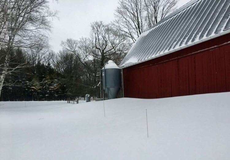 Snow drift next to barn