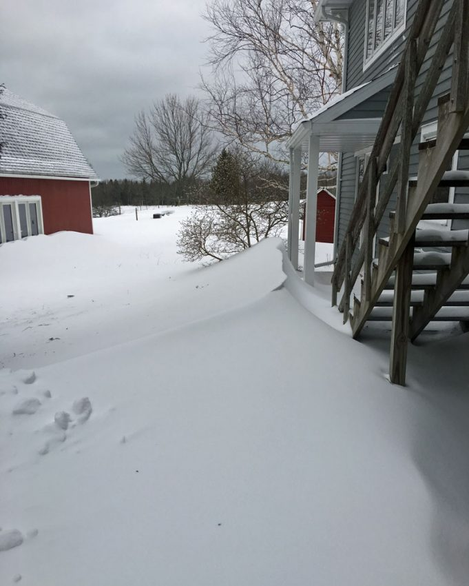 Path out the back door drifted over