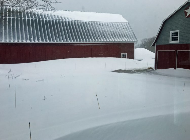 Snow drift next to the barn