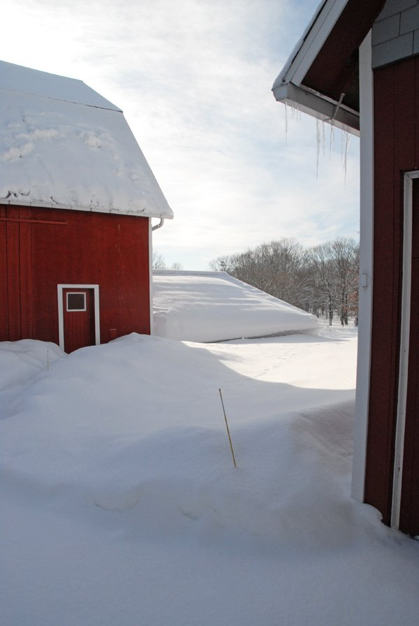 View of the barn after March 1st snow.
