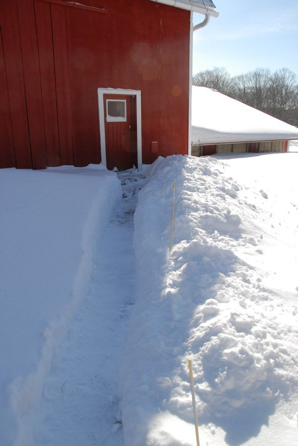 Snow covered path to the barn