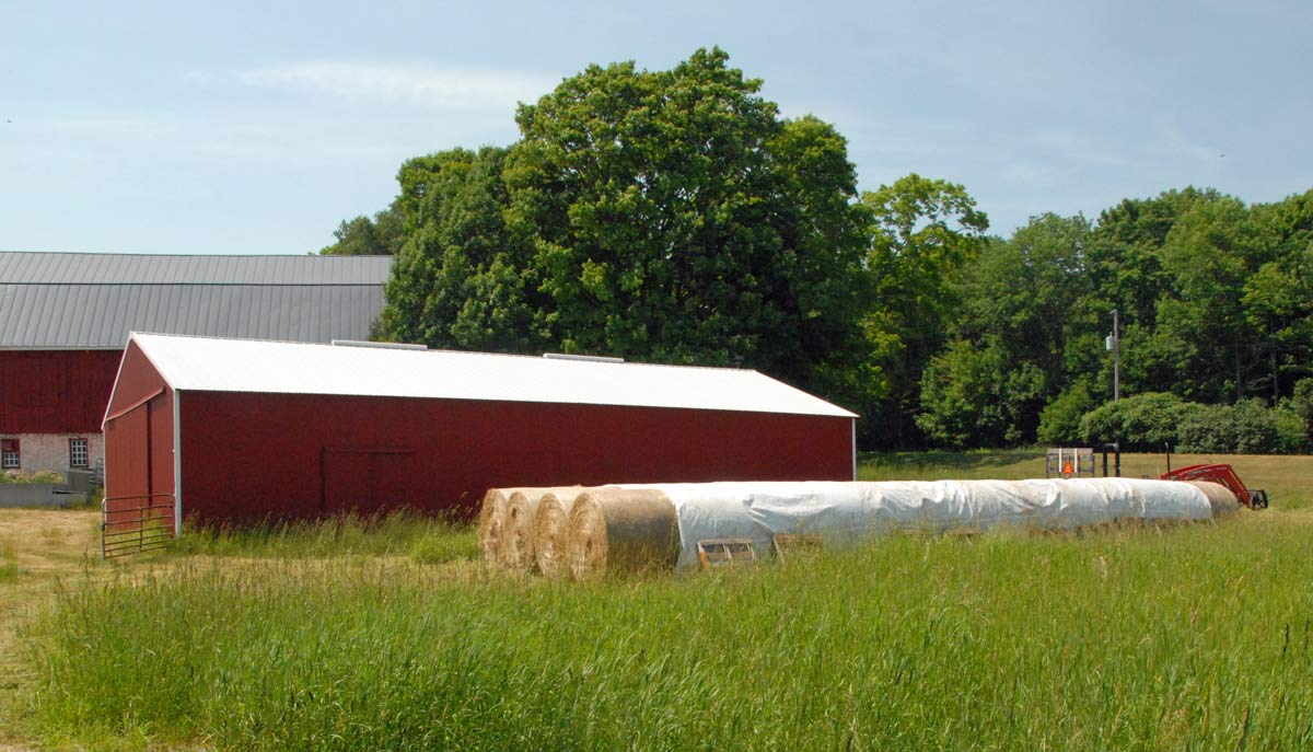 Hay bales stored under tarps