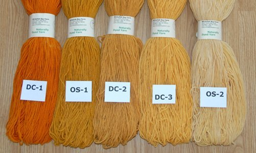 Naturally Dyed Yarn: Orange