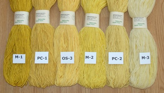 Naturally Dyed Yarn: Yellow